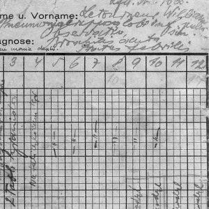 Auschnitt Krankenblatt aus Auschwitz